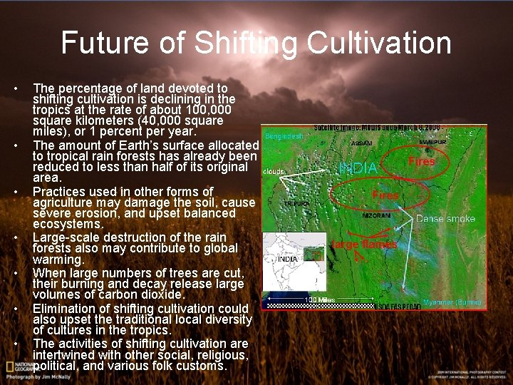 Future of Shifting Cultivation • • The percentage of land devoted to shifting cultivation