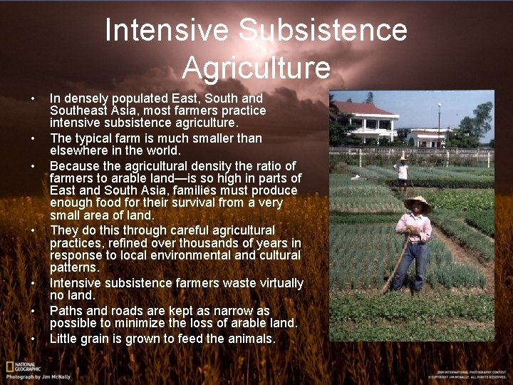 Intensive Subsistence Agriculture • • In densely populated East, South and Southeast Asia, most