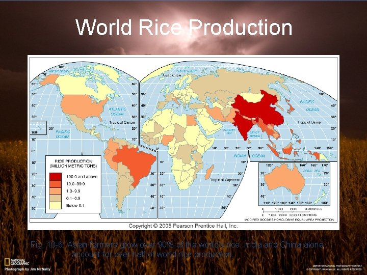 World Rice Production Fig. 10 -6: Asian farmers grow over 90% of the world's