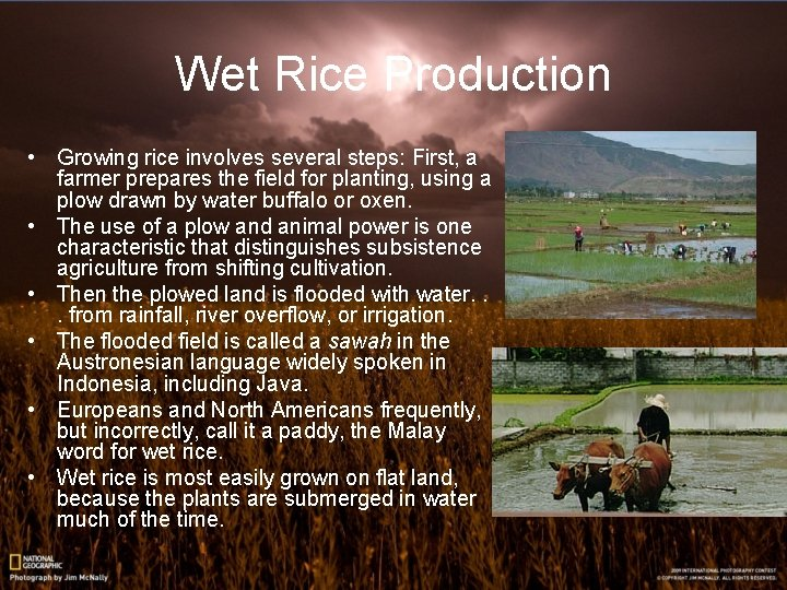 Wet Rice Production • Growing rice involves several steps: First, a farmer prepares the