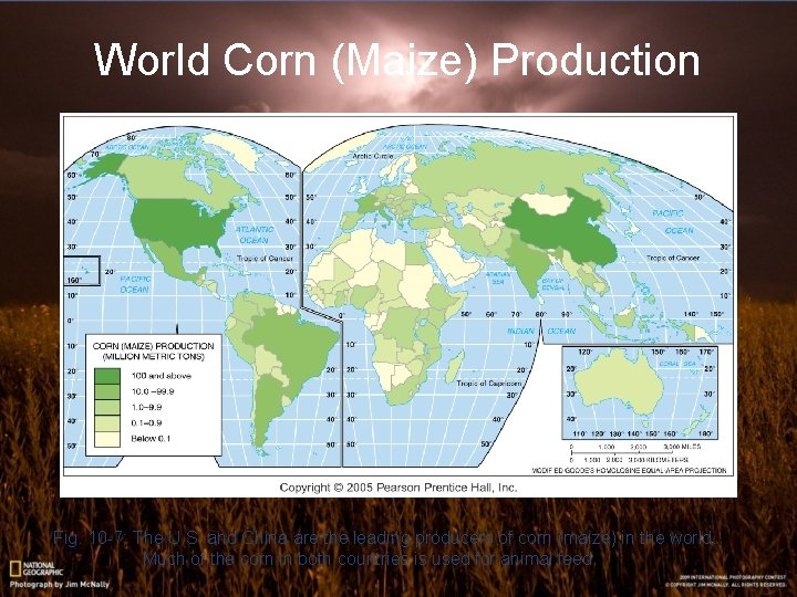 World Corn (Maize) Production Fig. 10 -7: The U. S. and China are the