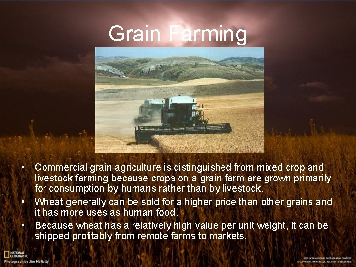 Grain Farming • Commercial grain agriculture is distinguished from mixed crop and livestock farming