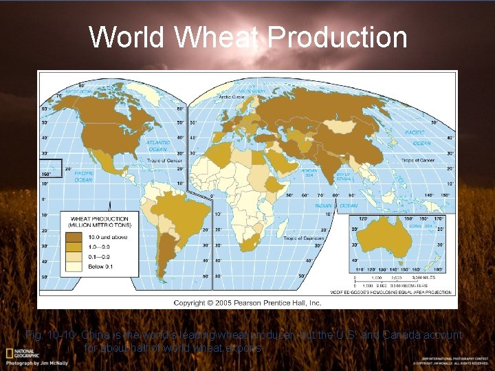 World Wheat Production Fig. 10 -10: China is the world's leading wheat producer, but