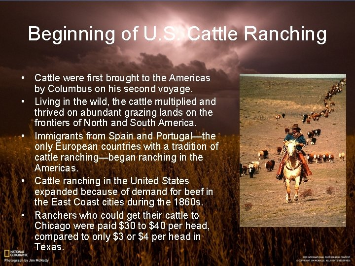 Beginning of U. S. Cattle Ranching • Cattle were first brought to the Americas