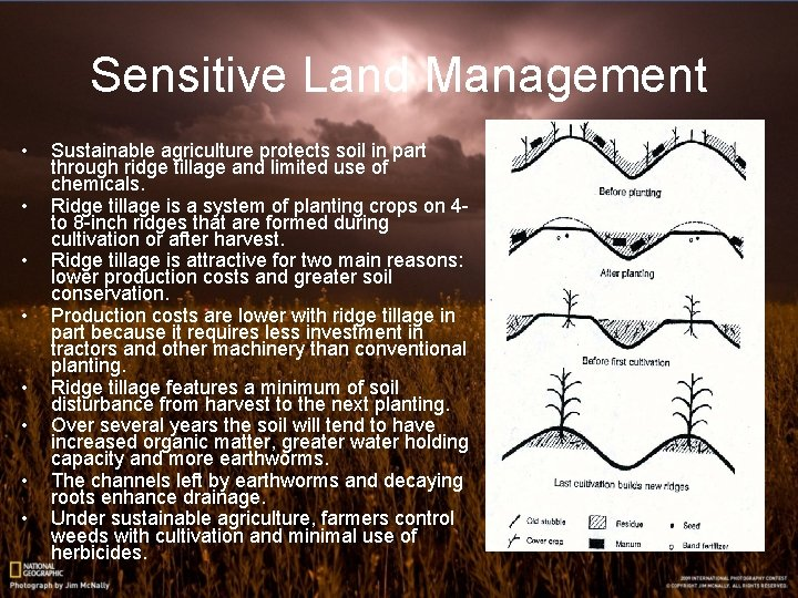 Sensitive Land Management • • Sustainable agriculture protects soil in part through ridge tillage