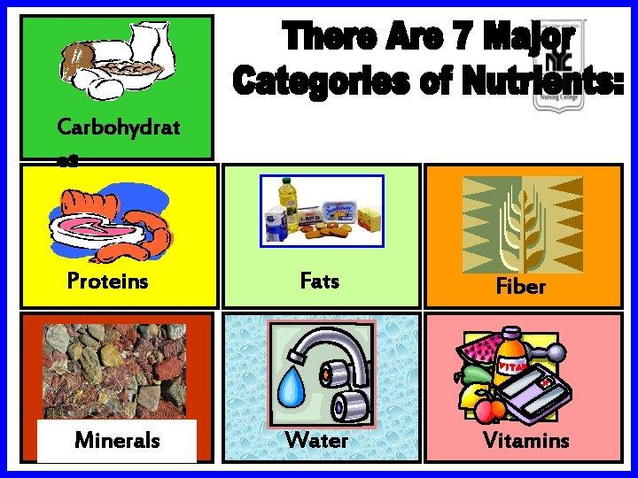 Carbohydrat es Proteins Minerals Fats Fiber Water Vitamins