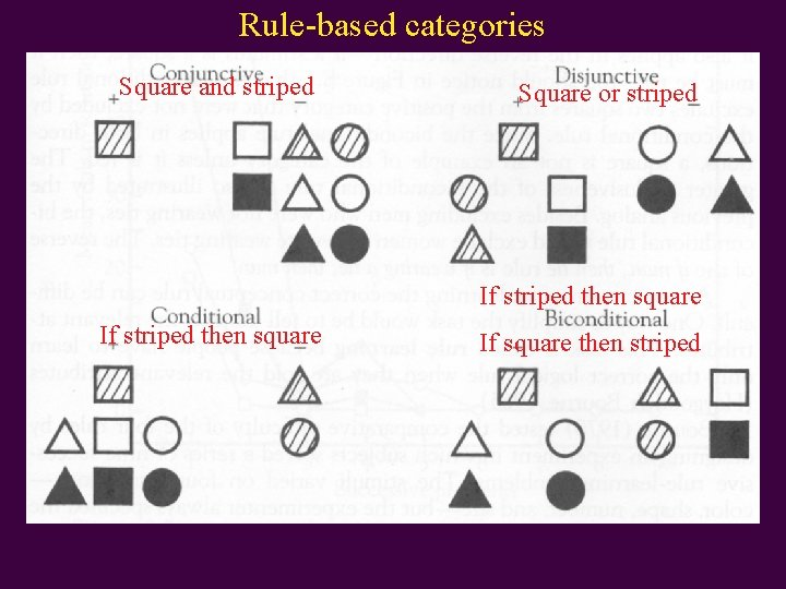 Rule-based categories Square and striped Square or striped If striped then square If square