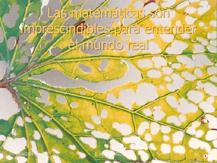 Las matemáticas son imprescindibles para entender el mundo real 4/4/2006 E. Macias. USC 66