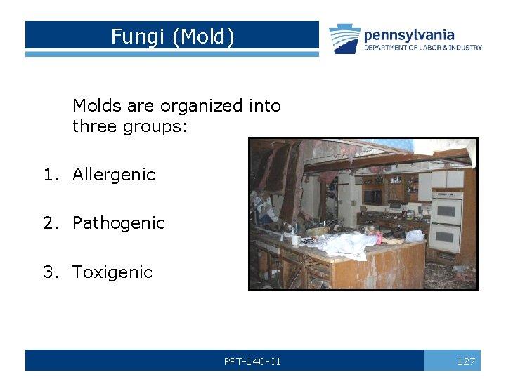 Fungi (Mold) Molds are organized into three groups: 1. Allergenic 2. Pathogenic 3. Toxigenic