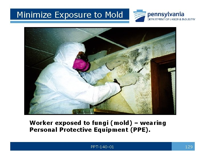 Minimize Exposure to Mold Worker exposed to fungi (mold) – wearing Personal Protective Equipment