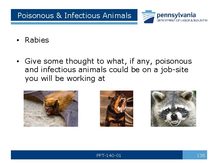 Poisonous & Infectious Animals • Rabies • Give some thought to what, if any,