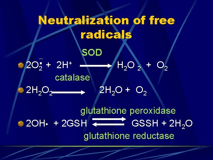 Neutralization of free radicals SOD 2 O 2 + 2 H+ H 2 O