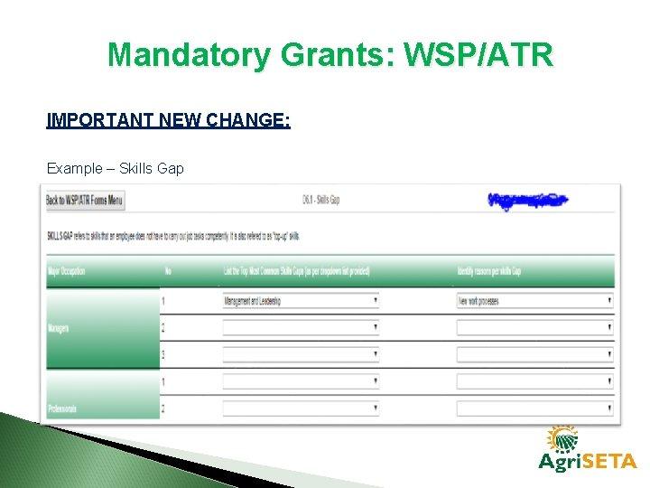 Mandatory Grants: WSP/ATR IMPORTANT NEW CHANGE: Example – Skills Gap