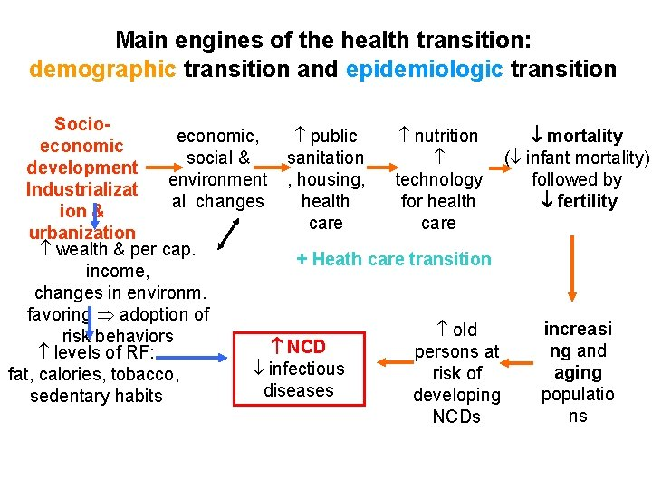 Main engines of the health transition: demographic transition and epidemiologic transition Socioeconomic, public nutrition