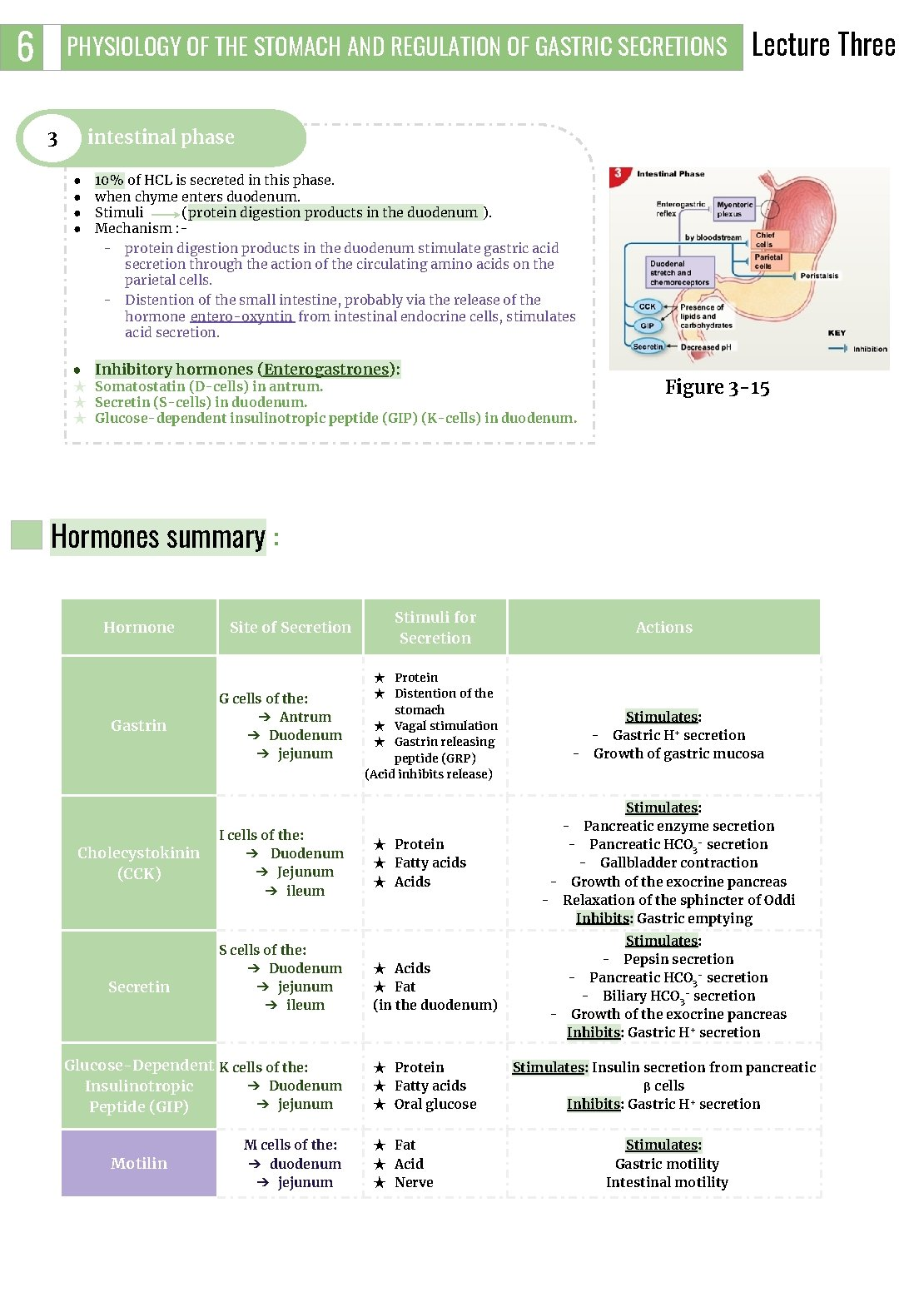 6 PHYSIOLOGY OF THE STOMACH AND REGULATION OF GASTRIC SECRETIONS 3 Lecture Three intestinal