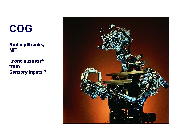 "COG Rodney Brooks, MIT ""conciousness"" from Sensory inputs ?"
