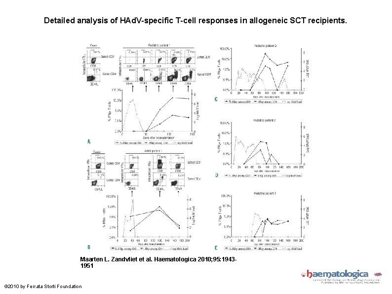 Detailed analysis of HAd. V-specific T-cell responses in allogeneic SCT recipients. Maarten L. Zandvliet