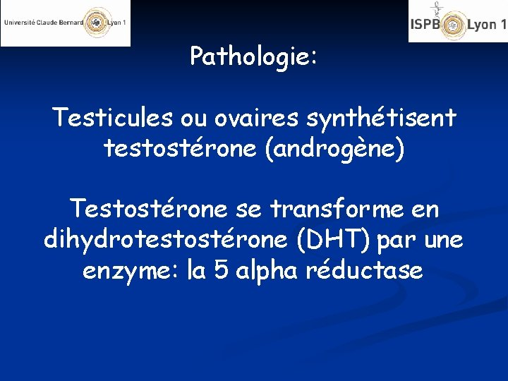 Pathologie: Testicules ou ovaires synthétisent testostérone (androgène) Testostérone se transforme en dihydrotestostérone (DHT) par