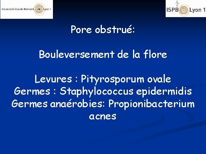 Pore obstrué: Bouleversement de la flore Levures : Pityrosporum ovale Germes : Staphylococcus epidermidis
