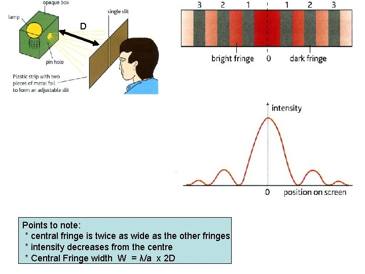 D Points to note: * central fringe is twice as wide as the other