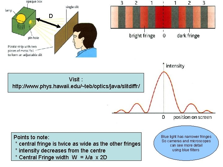 D Visit : http: //www. phys. hawaii. edu/~teb/optics/java/slitdiffr/ Points to note: * central fringe