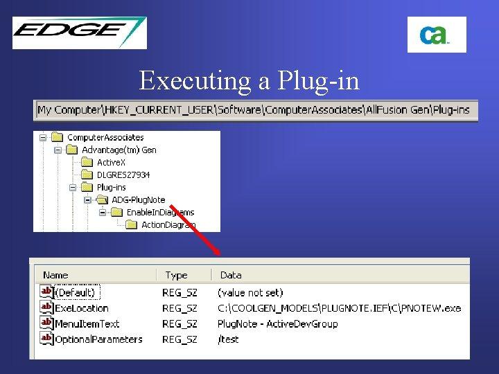 Executing a Plug-in