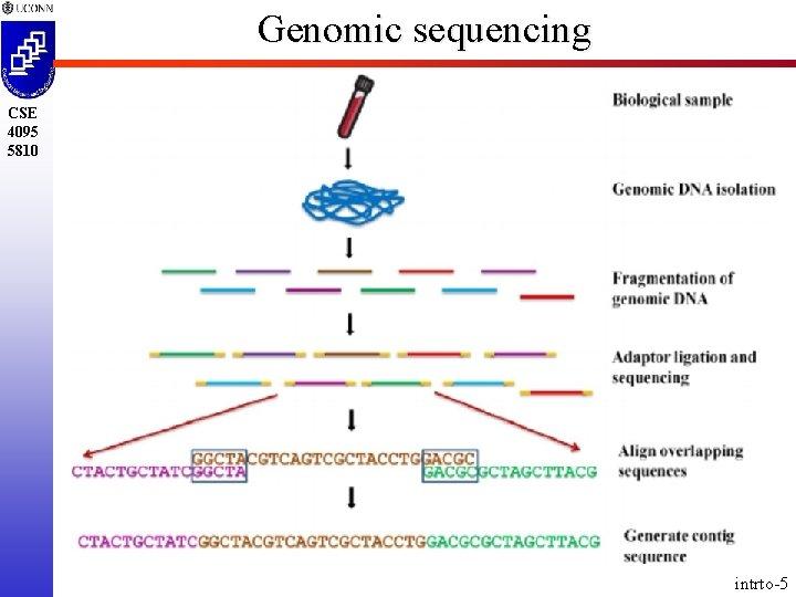 Genomic sequencing CSE 4095 5810 intrto-5