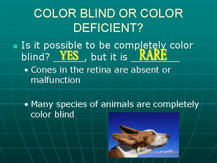 COLOR BLIND OR COLOR DEFICIENT? n Is it possible to be completely color blind?