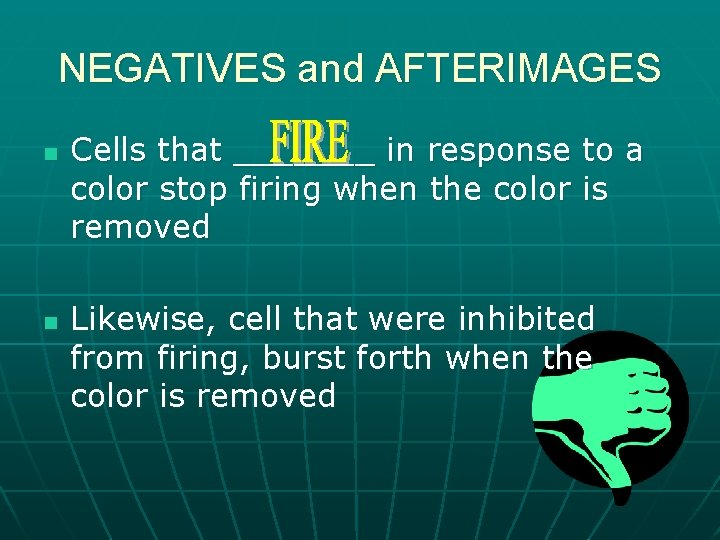 NEGATIVES and AFTERIMAGES n n Cells that _______ in response to a color stop
