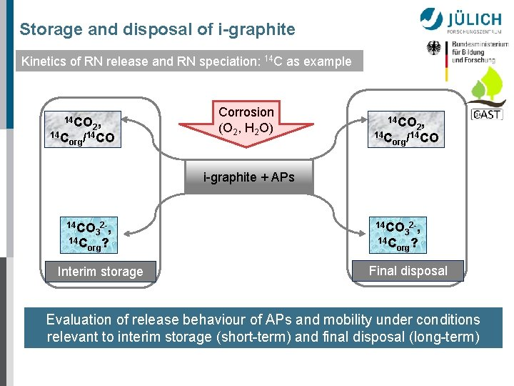 Storage and disposal of i-graphite Kinetics of RN release and RN speciation: 14 C
