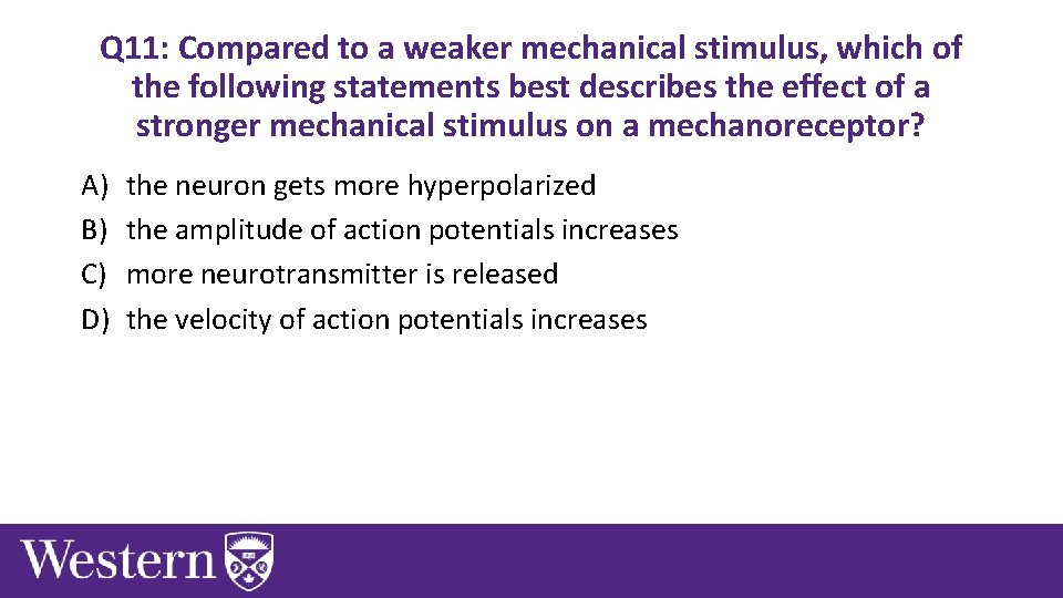 Q 11: Compared to a weaker mechanical stimulus, which of the following statements best