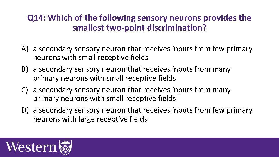 Q 14: Which of the following sensory neurons provides the smallest two-point discrimination? A)