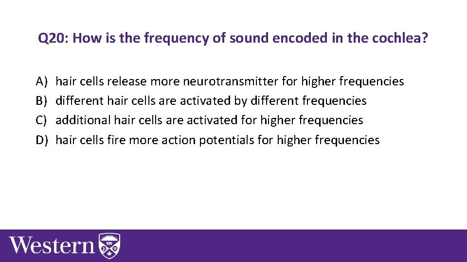 Q 20: How is the frequency of sound encoded in the cochlea? A) B)