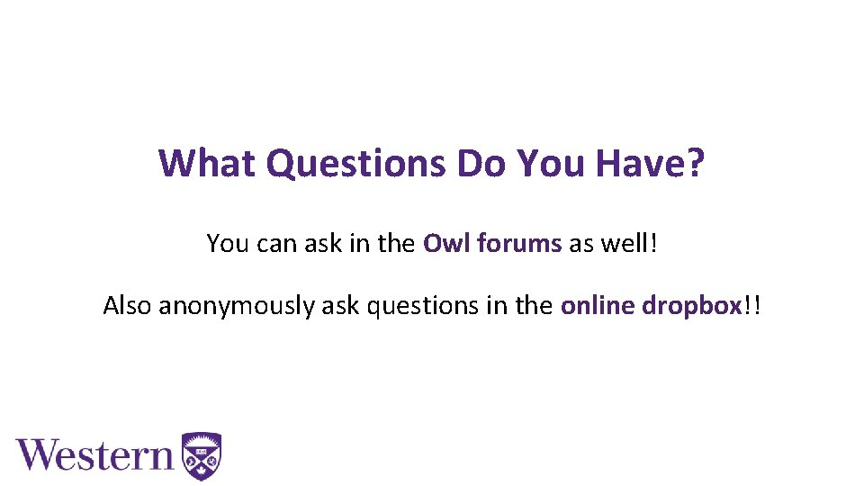 What Questions Do You Have? You can ask in the Owl forums as well!