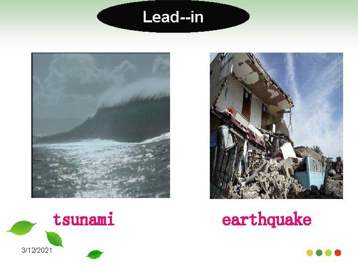 Lead--in tsunami 3/12/2021 earthquake