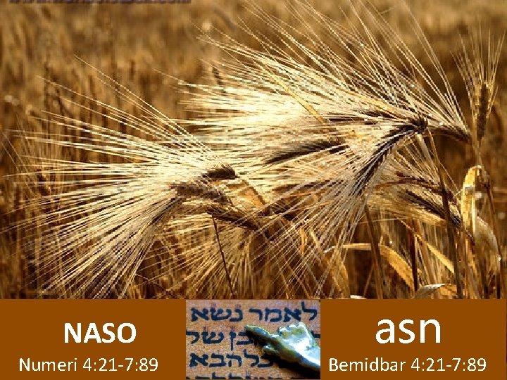 NASO Numeri 4: 21 -7: 89 asn Bemidbar 4: 21 -7: 89