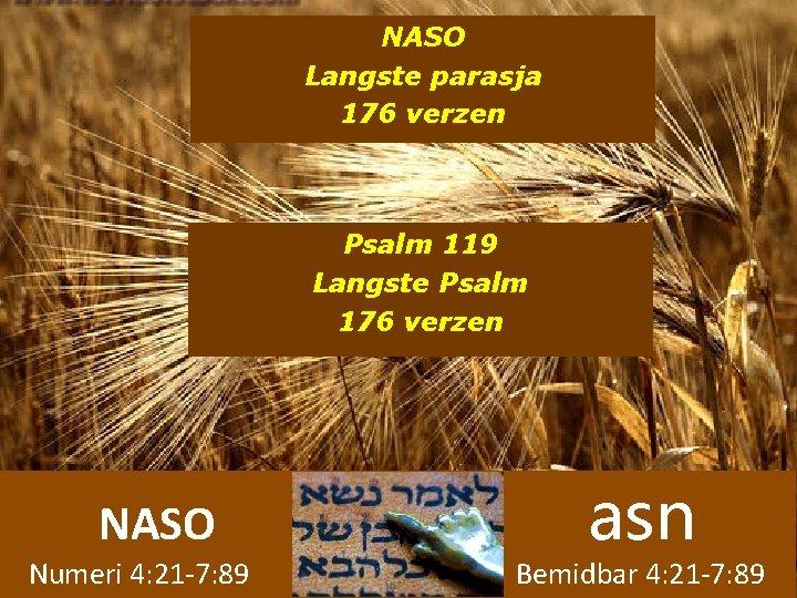 NASO Langste parasja 176 verzen Psalm 119 Langste Psalm 176 verzen NASO Numeri 4: