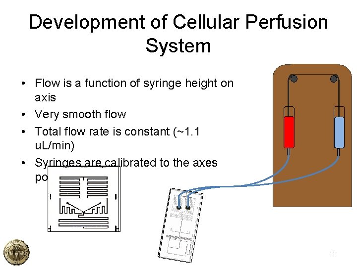 Development of Cellular Perfusion System • Flow is a function of syringe height on
