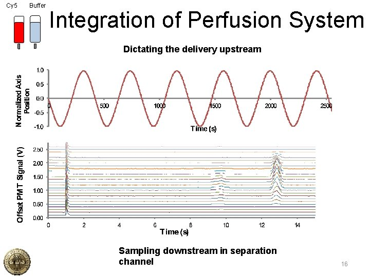 Cy 5 Buffer Integration of Perfusion System Dictating the delivery upstream Sampling downstream in