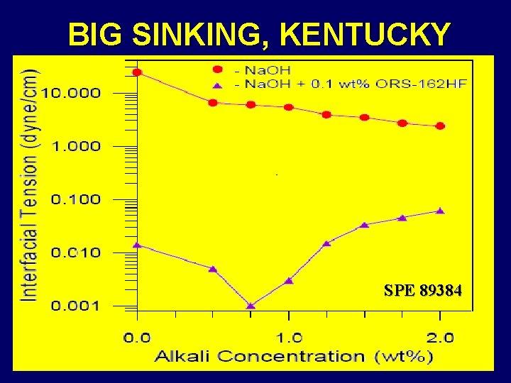 BIG SINKING, KENTUCKY SPE 89384