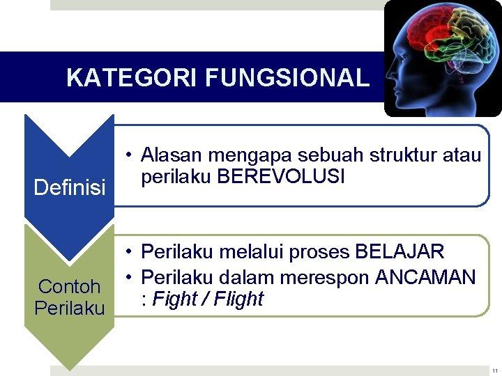 KATEGORI FUNGSIONAL Definisi • Alasan mengapa sebuah struktur atau perilaku BEREVOLUSI • Perilaku melalui