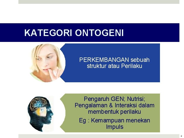KATEGORI ONTOGENI PERKEMBANGAN sebuah struktur atau Perilaku Pengaruh GEN; Nutrisi; Pengalaman & Interaksi dalam