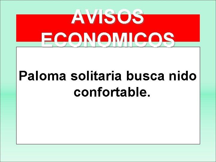 AVISOS ECONOMICOS Paloma solitaria busca nido confortable.