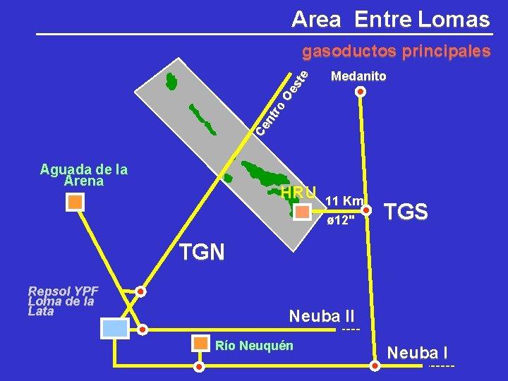 Area Entre Lomas Medanito Ce nt ro Oe st e gasoductos principales Aguada de