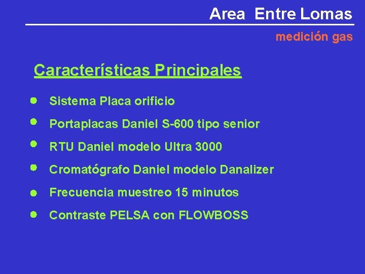Area Entre Lomas medición gas Características Principales Sistema Placa orificio Portaplacas Daniel S-600 tipo
