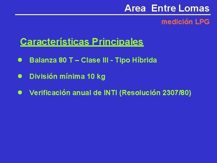 Area Entre Lomas medición LPG Características Principales Balanza 80 T – Clase III -