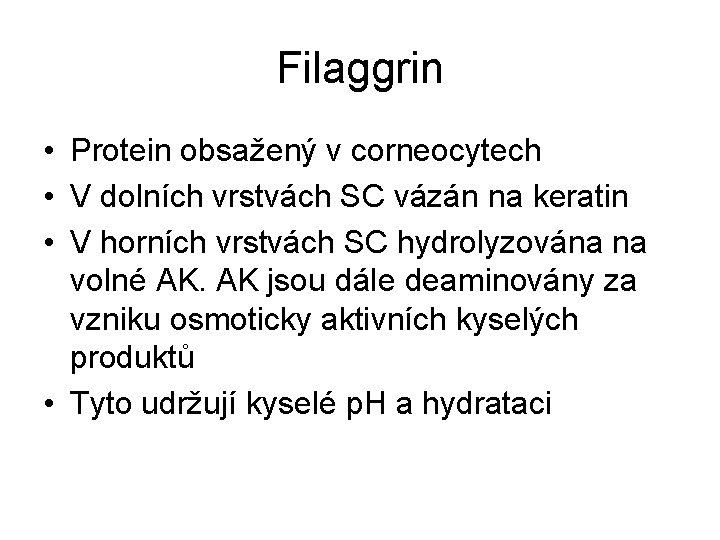 Filaggrin • Protein obsažený v corneocytech • V dolních vrstvách SC vázán na keratin