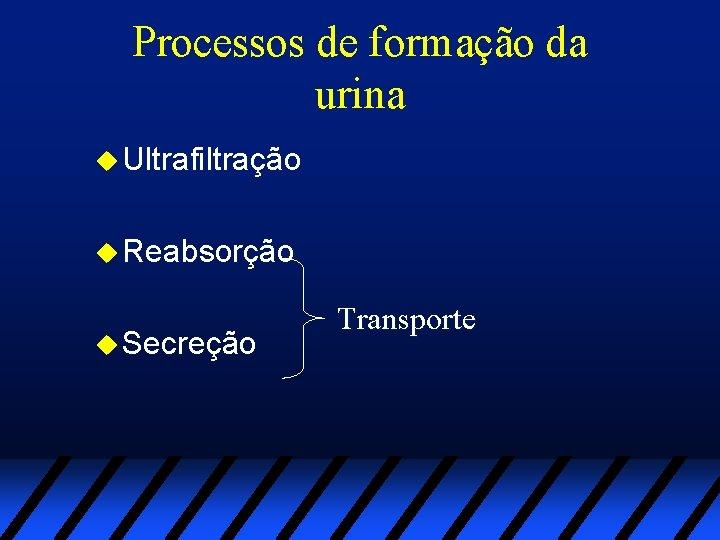 Processos de formação da urina u Ultrafiltração u Reabsorção u Secreção Transporte