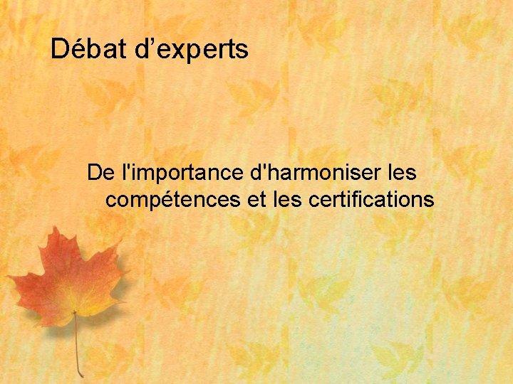 Débat d'experts De l'importance d'harmoniser les compétences et les certifications