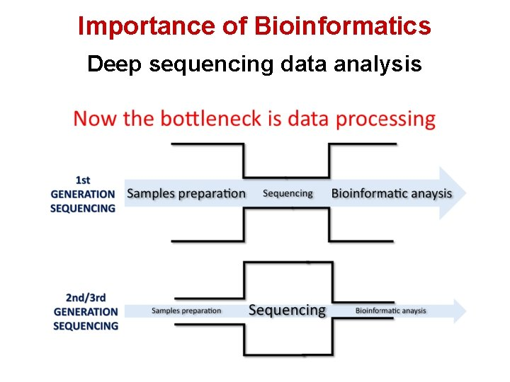 Importance of Bioinformatics Deep sequencing data analysis